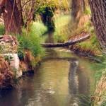 Acequia Río Guardal